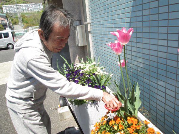 きれいな花を見せてくれてありがとう そしてさようなら